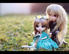 Elven Spring - Lindir & Tindomiel (Ludwig VS) Tags: sun spring aya doll ooak elf planning groove pullip custom ume custo jun elven noldor taeyang azazelle ayaume