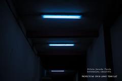 "Da 29 - Tema ""Luz"" (Silvia Jareo Tors) Tags: exterior photographer photography night noche light luz fotgrafa fotgrafacreativa creative fotografaartstica photoart art arte pic picture composition colour blue azul fujifilm fuji fujifilmxt1 minimalism minimalist minimalismo minimalista"