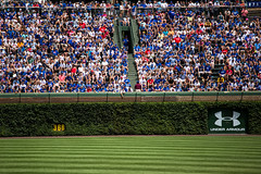 Ivy (Phil Roeder) Tags: chicago illinois baseball cubs wrigleyfield chicagocubs canonef70200mmf4lusm canon6d