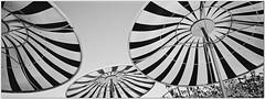 Umbrellas Pano (mueflickr) Tags: 19 4540 borderfx bw color elindio green hasselbladxpanii manmade panorama portra160 sandiego sep203 today umbrellas