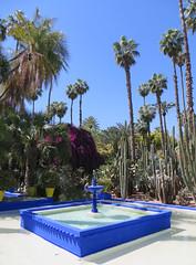 Marrakesh Majorelle_9857B (JespervdBerg) Tags: holiday spring 2016 africa northafrican tamazight amazigh arab arabic moroccanstyle moroccan morocco maroc marocain marokkaans marokko marrakech marrakesh majorelle