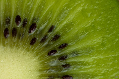 Kiwi (MM: Fill-the-frame with food) [explored] (Ben Pillen Photography) Tags: filltheframe with food fill frame macro mondays kiwi close up green lines ben pillen benpillen photography photo canon canon1100d 1100d 100mm mm 100 colour macromonday macromondays