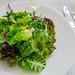 Green Salad, Lettuce, Avocado and Wild Herbs