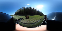 This Is Me in VR recorded a Canada Brownbear (ThisIsMeInVR.com) Tags: samsung 360 virtual reality ricoh vr oculus spherical 360vr