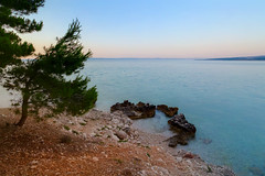 In the morning (Siuloon) Tags: morning sea tree beach sunrise croatia adriaticsea makarska chorwacja drzewo plaa bakavoda dalmacja