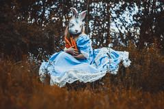 Keeping your secret safe (NightyLik) Tags: blue rabbit bunny girl grass dress mask secret carrot concept illusin