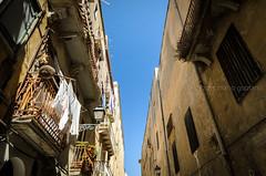 Per i vicoli di Trapani (Mario Graziano) Tags: sicilia sicily trapani italy it italia vicolo street viaggio journey trip voyage travel fotografiadaviaggio fotografiainviaggio travelphotography viajes
