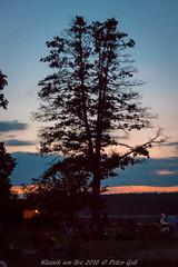 Sunset Dechsendorfer Weiher (thx for 4M views - pego28) Tags: 2016 dechsendorferweiher klassikamsee konzert sunset sonnenuntergang baum tree bluehour pond lake see weiher blaue stunde blue hour sonntenutergang nikon nkkor d800 highiso water wasser