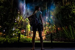 Alice in Wonderland (ivnseow) Tags: magical girl singapore nature mystic gardens by bay festival colourful colorful vibrant tropical floral night
