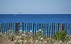 Accès interdit à ma piscine ! (Thierry.Vaye) Tags: hossegor capbreton barrière dune océan bokeh