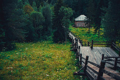 _MG_8880-66 (the_insk) Tags: village outdorse nature architecture green summer russia