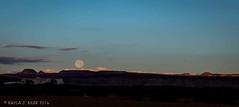 Moonset (eilerkaylaj) Tags: glencanyon desert slotcanyon keepexploring lake water sunrise moonset sunbeams canyon portrait arizona utah outdoors nationalpark