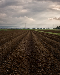Aratura e semina (Lo Zatto) Tags: countryside clouds bologna spring land ground plowing sowing perspective lines nikond600 nikkor50mmf14d