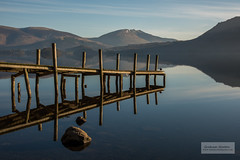 Waiting for the Ferry (1 of 1) (littlenorty) Tags: animals bird brandelhowbay cumbria derwentwater duck england europe hill lake lakedistrict landscape nature pier reflection rocks skiddaw sunrise type unitedkingdom wood beautiful calm mirror peacful serene