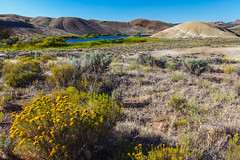 Painted Hills - 3 (rpdphotography) Tags: paintedhills