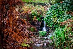 Stream Waterfall - (Listers Parks - Reshoot) (A. Jones Photography) Tags: park jones bradford pentax yorkshire tripod sigma autmn andrewjones milltown sigma50mm k20d sigma50mmf14exdg listerspark