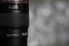 Canon 100mm 2.8L Macro (wcwhiting) Tags: canon t3i 100mm28l 100mm28lmacro 100mm28macro ef100mmf28lisusmmacro lens elbokehwall bokeh wcwhiting billwhiting billwhiing