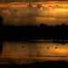 Bolsa Chica Wetlands Huntington Beach Rainy Sunrise