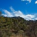 Looking Back to Emory Peak and an Afternoon of Hiking