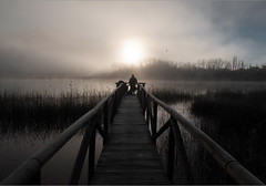Amanece en la laguna (miguelangelortega) Tags: espaa naturaleza agua nikon amanecer cielo pasarela niebla fotgrafo cuenca 1755 ua marjal ltytr2 ltytr1