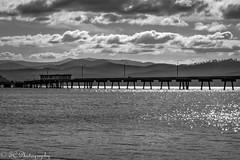 Eden Daylight to Sunset 1 B&W (_TC Photography_) Tags: sunset beach pier australia eden