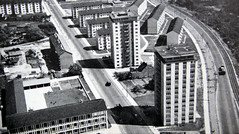 Back then a modern quarter in Karlsruhe of 1961 (roomman) Tags: road street new old blackandwhite bw 3 black building art history architecture modern train vintage river germany buch book design 60s postmodern tram style railway plattenbau erich aerial historic condo 1950s highrise bauer 50s alb bandw edition baden karlsruhe development 3rd 1950 1961 antiquariat 1960 luftbild andwhite albrecht 2014 badenwürttemberg aereal württemberg postmoderne luftbilder bawü dritte brugger auflage 160s staudinger weinbrenner bildband weinbrennerstrasse 3rdedition entenfang straase condominion condominions 3auflage erichbauer staudingerstrasse plattenbautenstadtbahn
