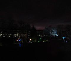 The Electric Gardens (Bricheno) Tags: park trees night lights scotland glasgow escocia wef botanic botanicgarden botanicalgardens westend szkocja botanicgardens schottland scozia 2015 cosse westendfestival  esccia electricgardens   bricheno scoia