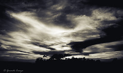 Misterious Sky in Black and White. (cuaya.gerardo) Tags: sky blackandwhite naturaleza nature mxico clouds landscape photography highcontrast paisaje cielo nubes cont