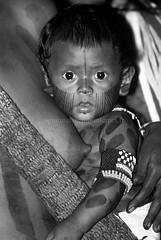 Kayapo (guiraud_serge) Tags: brazil portrait brasil amazon indian tribe ethnic indien matogrosso indio labret brésil tribu amazonie amazone forêttropicale ethnie kayapo kuikuro metuktire plateaulabial hautxingu parcduxingu sergeguiraud artducorps ornementcorporel