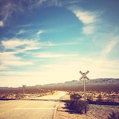 all alone (Maureen Bond) Tags: train crossing tracks desert hot clouds brush roadtrip ghosttown maureenbond