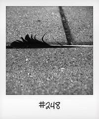 """#DailyPolaroid of 2-6-16 #248 • <a style=""""font-size:0.8em;"""" href=""""http://www.flickr.com/photos/47939785@N05/27744778053/"""" target=""""_blank"""">View on Flickr</a>"""