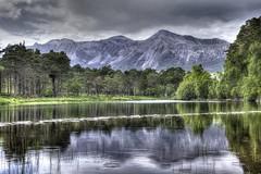 Can you hear the rain, love (pauldunn52) Tags: loch coulin beinn eight north west scotland torridon reflection scots pines
