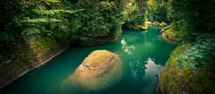 Fairy Tale Valley (brue') Tags: lichtensteig valley tal thur schlucht wasser water green nature natur schweiz switzerland suisse svizzera svizzra st gallen toggenburg