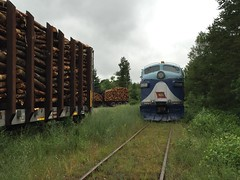"""F"" is for Freight (ujka4) Tags: wisconsingreatnorthern wgn wgnr f7 wabash springbrook wisconsin wi pulpwood"