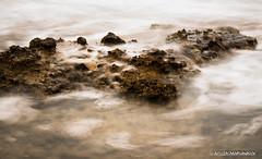 Stone amongst water. (Axilleas Papathanasioy) Tags: water salamina stone