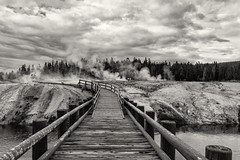 Yellowstone National Park (Guilherme Nicholas) Tags: park usa yellowstone landmark landscape nature sky blackandwhite bw monochrome fog smoke national
