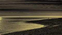Am Meer (digital_underground) Tags: sea shore water waves blackwhite schleswigholstein germany europe fehmarn island sonyalpha coast beach men segel sail