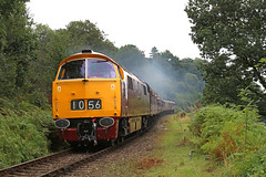 D1015 Western Champion powers out of Bewdley (Andrew Edkins) Tags: d1015 westernchampion whizzo westernweekend severnvalleyrailway diesel maybach preservedrailway clag canon bewdley railwayphotography class52 geotagged trees