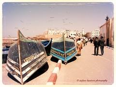 boats (stelandis) Tags: birds port boats marocco essaouira