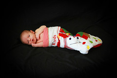 ChristopherAllisonPhotography - Kash Newborn-3256 (christopherallisonphotography) Tags: california family flowers portrait baby home canon mom army spring dad babies child sandiego military father navy mother newborn 7d marines infate christopherallisonphotography