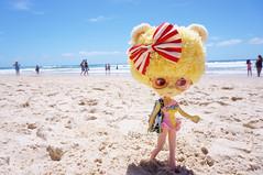 30 Nov 2014......Wait for me!!! (Kewty-pie) Tags: beach sunglasses bag doll stock lion australia bow blythe custom swimsuit surfersparadise goldcoast drblythenstein yarnhead princesinga
