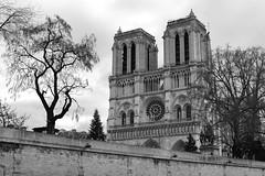 Notre Dame de Paris (PY Gallery) Tags: paris architecture noir cathdrale et blanc
