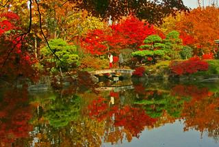 Japanese garden in Fuchu central park4