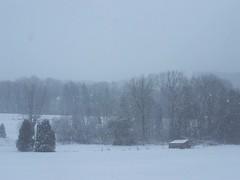Winter (sooc) (wolfgraebel) Tags: christmas xmas schnee winter snow fog weihnachten landscape bayern deutschland bavaria nebel gothic htte german valley isar landschaft tal deutsch