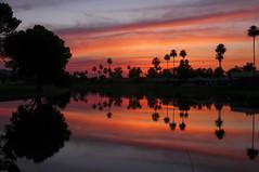 Spring Sunset (fenicephoto) Tags: sunset arizona sunsetarizona