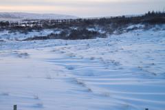 DSC01356 (ekremenak) Tags: photo iceland 1502 150212