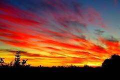Sunset - 26 Feb 2015 (SKR_Photography) Tags: blue sunset newzealand summer orange yellow evening dusk auckland february downunder waitakere 2015 landofthelongwhitecloud summersunset 26feb2015