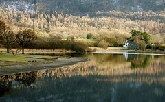 derwent water (plot19) Tags: uk trees light england house lake reflection tree water landscape photography nikon northwest britain derwent north lakes lakedistrict cumbria land northern plot19