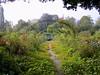 Claude Monet's Garden (oxfordblues84) Tags: flowers france garden europe giverny touristattraction claudemonet hautenormandie frenchimpressionism academiedesbeauxarts roadscholar euredepartment claudemonetgarden uppernormandy foundationclaudemonet roadscholartour roadscholarfieldtrip communeineuredepartment