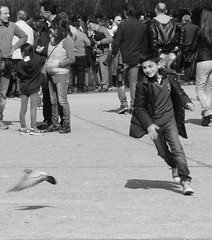 Reggia di Caserta (biagio_nuciforo) Tags: e botanico napoli fiori 700 palazzo piante 800 bianco nero due moderna reale giglio giardini caserta beni storia contemporanea reggia orto fontane sicilie culturali briganti settecento inglesi ottocento regno borbonico borbone